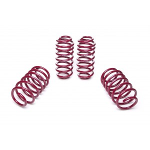 Vogtland Lowering Springs - Mercedes Benz C-Class (W205) AMG, Coupé, C63 AMG, C63 S AMG 20mm F/R